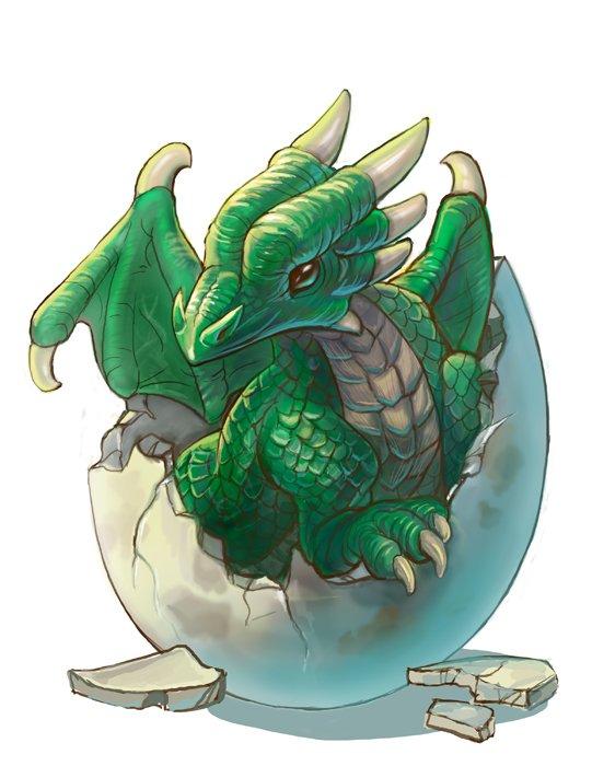 les dragons ! <3