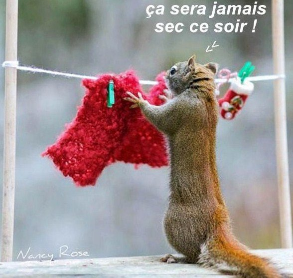 mon humour du weekend ....