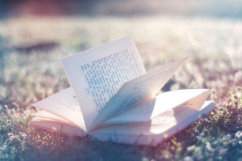 << Fais ce qui te rend heureux, sois avec ceux qui te font rire, ris autant que tu respires et aime aussi longtemps que tu vivras >>