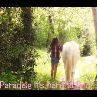 ♥ Mon poney, mon bijou, mon trésor, mon tout ... ♥