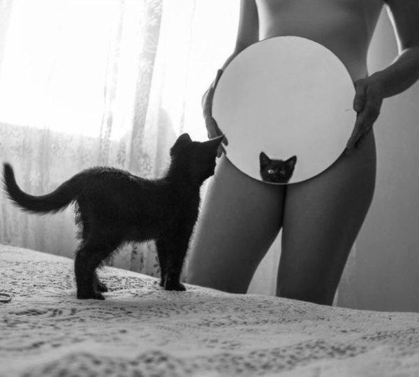 La chatte....•*