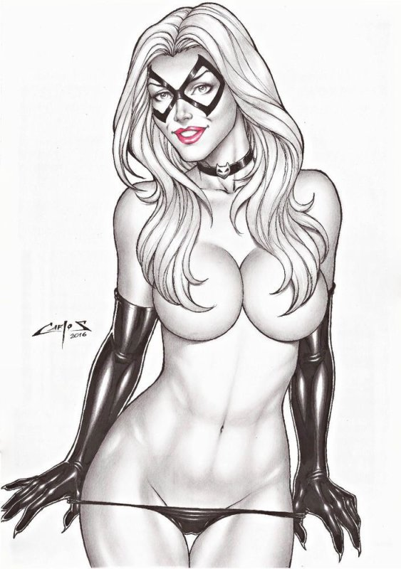 Black cat... By Carlos Augusto....•*