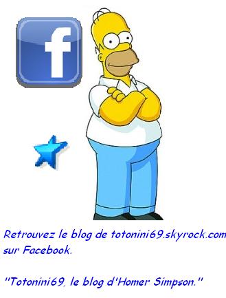 Homer Simpson est sur Totonini69