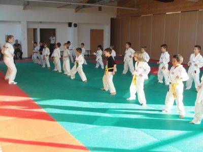 club taekwondo tournefeuille