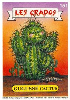 GUGUSSE cactus