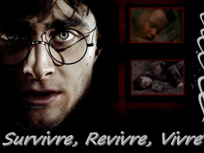 Survivre, Revivre, Vivre (section Harry Potter)