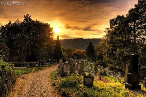 Chapitre un. Il n'y a pas que la mort qui nous cause de la peine, il y a la vie, la perte de quelque chose, le changement.
