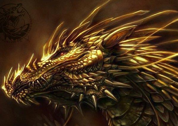Les larmes du dragon Chapitre 10: La porte d'Eragon