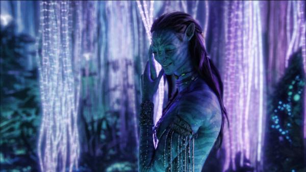 Les Na'vi disent qu'on naît deux fois. La deuxième naissance c'est quand on a gagné sa place dans le peuple, pour toujours.