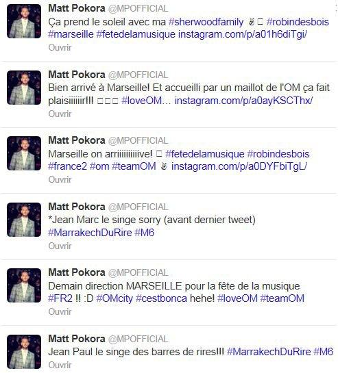 Tweeter Matt ( fête de la musique) + info