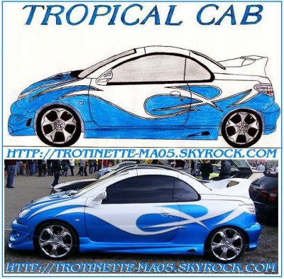 206 C.C   Tropical Cab