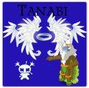 Photo de tanabi
