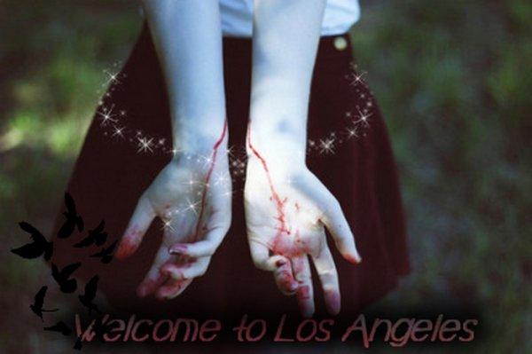 ► Bienvenue ◄