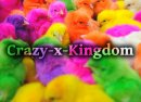 Photo de Crazy-x-Kingdom