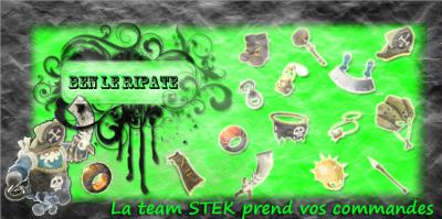 Présentation de la Team STEK.