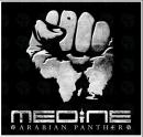 Photo de African-Panther