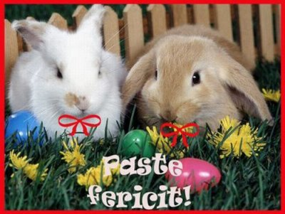 Joyeuses Paques !!!! Happy Easter !!! Buona Pasqua !!!
