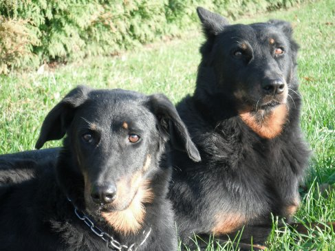 Unka & Vicky Novembre 2011
