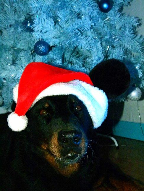 Unka vous souhaite un Joyeux Noel !!!