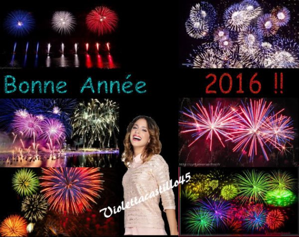 Bonne Année 2016 !!