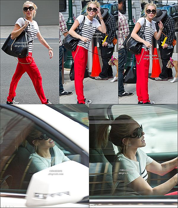 . 21/07/2012 - Miley et Ziggy ont rendu visite à Liam sur le tournage de Paranoïa..