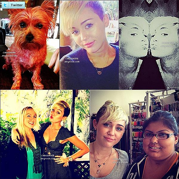 . Découvrez de nouveaux stills du film « So Undercover » où Miley a le rôle principal.Découvrez également cinq photos diverses postées sur le réseau social Twitter par Miley, des amis et fans..