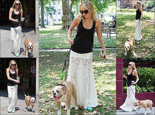 . 18/07/2012 - Miley C. promenait son chien, Ziggy, dans un parc de Philadelphie.Miley C. quittait ensuite le Capital Grill avec son fiancé, Liam, puis elle rentrait, à son hôtel de Philadelphie..