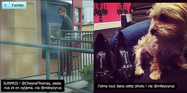 - Miley C. a posté deux photos sur Twitter, dont une de son ami, Cheyne Thomas !-