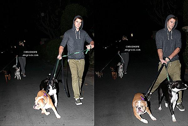 . 20/10/12 : Miley et Liam ont été vus promenant leurs chiens dans Los Angeles. .