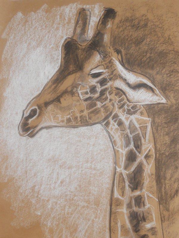 Grande girafe (kraft, fusain, pastel) sept 2010