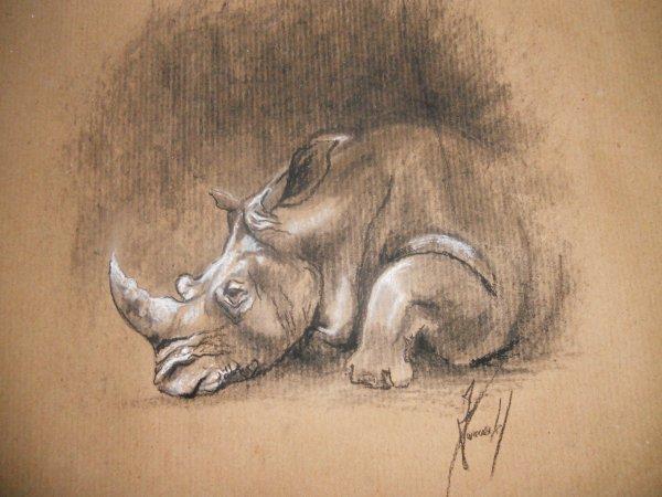 Le rhinoceros de Cécile. Kraft, fusain, pastel. Octobre 2010. 29/29 cm