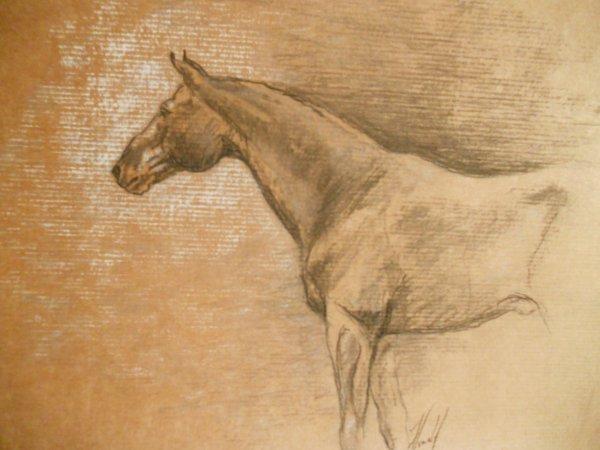 Images histoire de Valespoir. Fusain, pastel. Décembre 2010