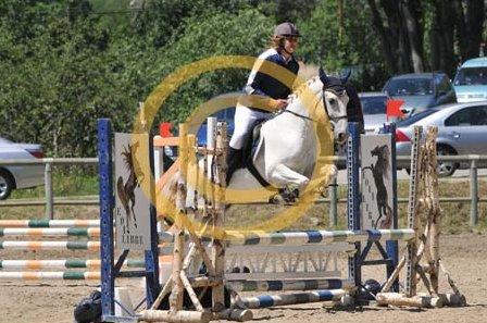 """Chapitre 3 : """"Si un jour on tombe, relevez d'abord mon poney, car sans lui c'est plus possbile.."""""""
