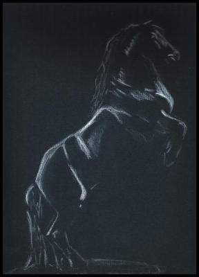 dessin d 39 un cheval mon premier crayon blanc sur feuille noir mes dessins mes peintures mes. Black Bedroom Furniture Sets. Home Design Ideas