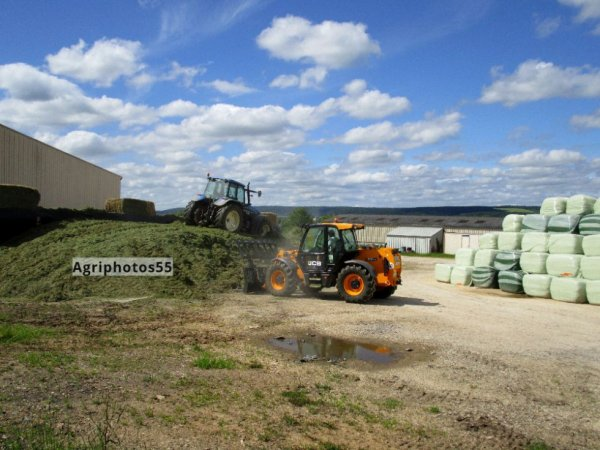 Ensilage toujours .