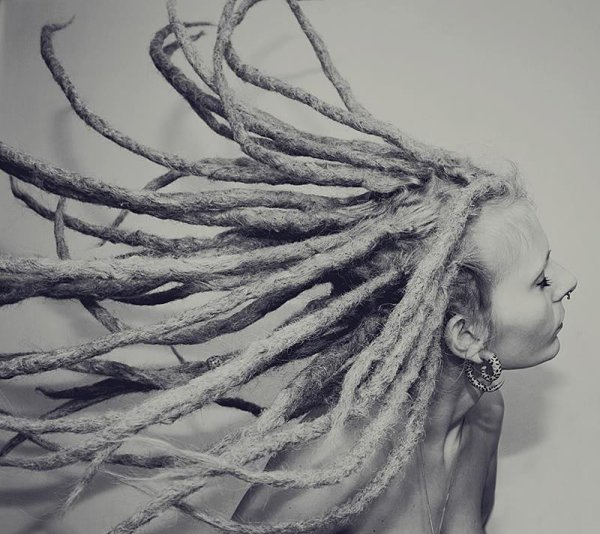 (RASTA DREADS) bb !!!!