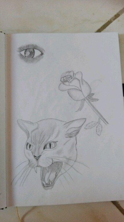 Mes derniers dessins #1