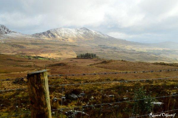 ROADTRIP EN IRLANDE - PARC NATIONAL DE KILLARNEY