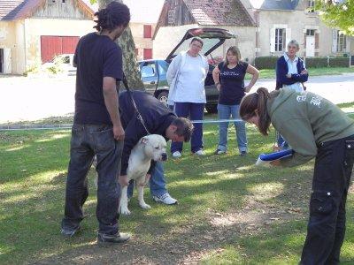 show des louves 19 09 2010