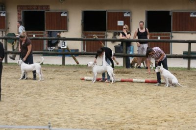 SUMMER SHOW SOREL MOUSSEL JUIN 2011