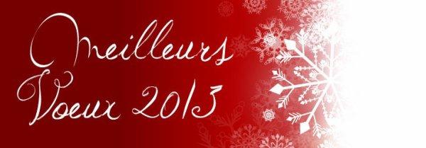 bonne année 2013 a tous