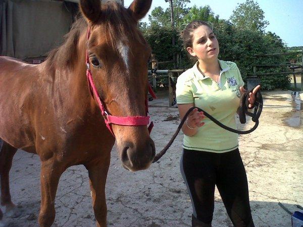 voilà le jeune cheval Tom Tom!!!