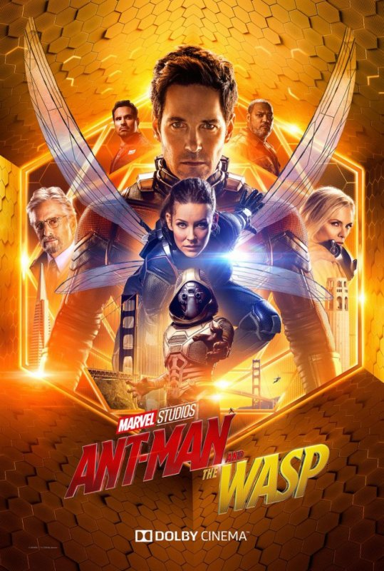 Ant-Man and The Wash