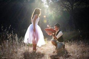Un jour, mon prince viendra...