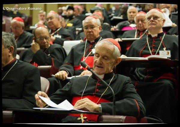 Pour le cardinal Tauran, l'éducation est le meilleur rempart contre la haine