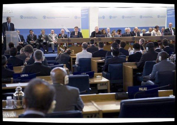 Conférence de la FAO : le Pape soutient le combat pour la sécurité alimentaire