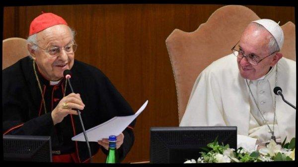 Le cardinal Baldisseri souligne la responsabilité écologique du Synode sur l'Amazonie