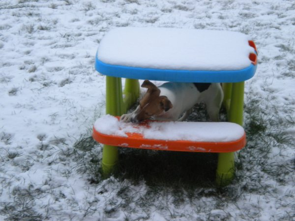 ma fistou dans la neige