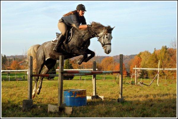 Petit poney Telma devient Grand !