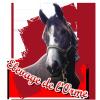 Elevage-de-Lorme